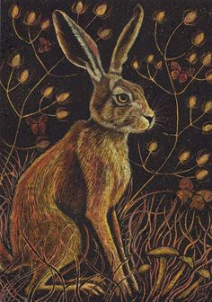 Illustration, hares, gothic images, prints, cards and jewellery Hare Illustration, Rabbit Art, Rabbit Head, Petit Tattoo, Gothic Images, Rabbit Pictures, Bunny Art, Wildlife Art, Animal Drawings