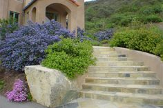 Curving stone staircase