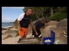 ▶ Bizarre Foods - Eastern Australia Bizarre Foods With Andrew Zimmern - YouTube