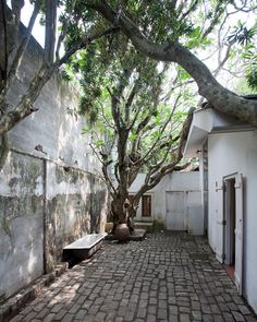 Courtyard in Geoffrey Bawa's house, Colombo