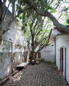 Courtyard in Geoffrey Bawa's house, Colombo