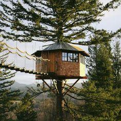 homem-larga-tudo-para-morar-em-casa-na-árvore-2