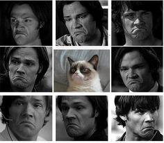 Sam is grumpy cat