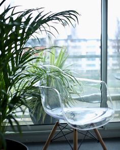 #eames #chairdesign #plants