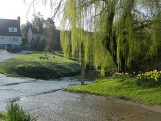 The Ford, Braughing, Hertfordshire in Spring