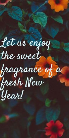 Happy New Year Quotes : vintage new years cards 2019 for friends & family. Happy New Month Quotes, Happy New Year Message, Funny New Year, Happy New Year Wishes, Happy New Year Greetings, Happy New Year 2019, New Year Wishes Images, New Year Wishes Messages, New Year Wishes Quotes