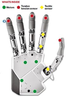 A sensational breakthrough: the first bionic hand that can feel - News - Gadgets and Tech - The Independent