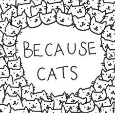 @Monica James 'Cause cats.