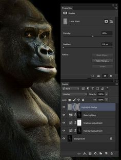 How to Create and Use Luminosity Masks in Adobe Photoshop
