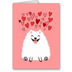 White Pomeranian Valentine's Day Card