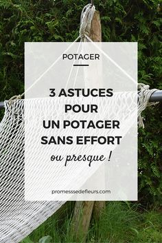 Un potager sans effort : nos astuces pour cultiver son potager sans trop d'effort. #potager