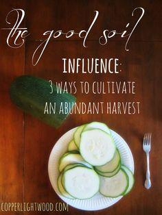 the good soil: INFLUENCE - three ways to cultivate an abundant harvest