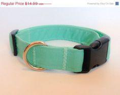 Tiffany Blue Turquoise Dog  Collar