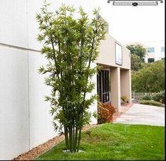 5 Sublime Ideas Artificial Flowers Cleanses Plants Outdoor Front Doors Large