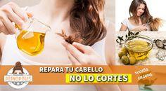 Reparar las puntas abiertas no es sencillo por eso dale a tu cabello este tratamiento natural que logrará que lo tengas sano y sedoso