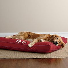 Our large Cotton Dog Bed is the perfect size for your big dog!