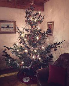 Merry Christmas! ❄️🎅🏻🤶🏻