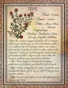Printable Herbs Book of Shadows Pages Set 2, Herbs & Plants Correspondence, Grimoire Pages, Witchcraft, Wicca, Printable BOS