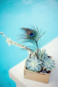 Peacock and Succulent Centerpiece | Photo by Sarah Yates