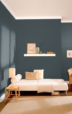 Black Sable Behr Paint Color for the walls