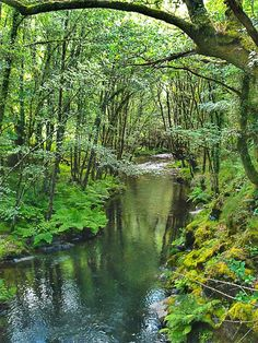 Ruta de la Mina de As Talladas, Santa Eulalia de Oscos, Reserva de la Biosfera Oscos - Eo, Asturias