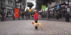 Microsoft's new #3D audio #tech helps the #visuallyimpaired get around cities independently. ---» tnw.me/Gulrcf0