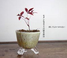 【楽天市場】銀彩白硝子・丸鉢植木鉢・盆栽鉢・ガラス製の花器・花瓶・フラワーベースの通販・販売:gallery 365