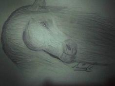 Indomable.  By: Samura  For: Mi Papá   He vuelto, ✌😸, Libre e indomable  #dibujo #dibujosalapiz #dibujos #dibujando #indomable #caballos #caballossalvajes #hevuelto #hevueltoasoñar #libertad #lapiz #drawing #drawings #pencildrawing #pecils #lovedrawing #drawingoftheday #liberate #free #horsesofinstagram #horsens