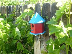 Make and mount your own birdhouse for under 10 dollars.