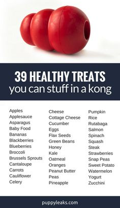 Stuffing a Kong is my favorite dog boredom buster. Here's 39 Healthy Treats to Stuff in a Kong.