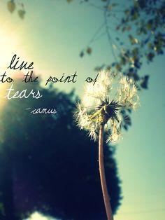 """Live to the point of tears // original quote : """"Hommes et femmes sont faits pour vivre et créer, vivre et créer jusqu'aux larmes"""" (Andre Camus)"""
