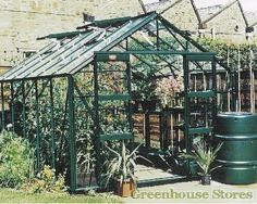 Elite Belmont 8x8 Green Greenhouse Horticultural