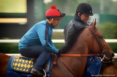 American Pharoah - morning workout at Churchill Downs on June 1, 2015. Photo by Adrianne Smith Photography