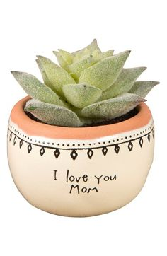Main Image - Natural Life I Love You Mom Mini Potted Succulent