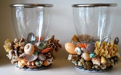Christa's South Seashells - Pair of Hurricane Lanterns with Tropical colors and specimen sponge, $2,400.00 (http://csseashell.mybigcommerce.com/pair-of-hurricane-lanterns-with-tropical-colors-and-specimen-sponge/)