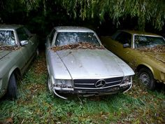my heart grieves #560SL #R107