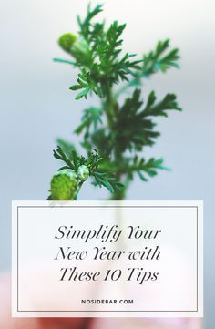Here are ten ways—tested and true—to start the New Year off as you begin your decluttering, simplifying, and minimizing journey.