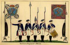 Garnison Regiment v. Bünau [1/2]