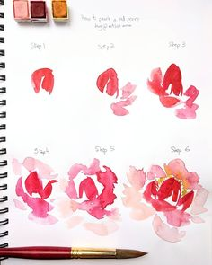 ❤️ Sharing a little step by step with you today! Here's how to paint a red peony the way I would. Hope this helps if you try this technique tag #biancasartchallenge so I can see!! . Materiel used : round brush + 3 colors: red, light pink or peach and yellow. That's it!! Happy painting . . . . . . . . . . . #watercolor #botanicalart #botanical #botanicalillustration #drawingtutorial #howtodraw #howtopaint #artvideo #arttutorial #drawing #flowers #thebmorecreatives #watercolour #wate...