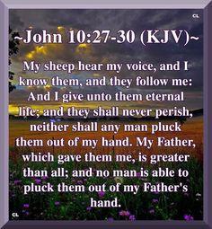 John KJV Hallelujah Amen and more Blessings! Christian Videos, Christian Quotes, Love The Lord, Gods Love, John 10 27, Prayer Poems, Revelation 19, Blood Of Christ, King James Bible Verses