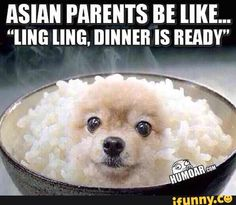 asian Racist jokes