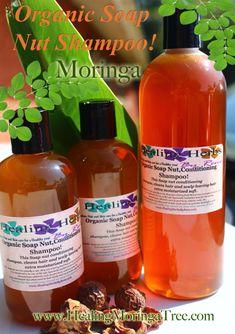 Moringa Soap Nut Herbal Shampoo Soap Nuts Shampoo, Tree Nut Allergy, Moringa, Natural Oils For Skin, Diy Hair Care, Nut Allergies, Moisturizing Shampoo, Soap Making, Body Wash