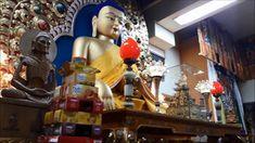 Дхармасала. Резиденция Далай Ламы. Молебен. Елена Ушанкова  Путешествие ...