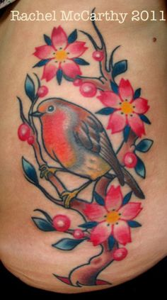 Robin on side, hip to ribs