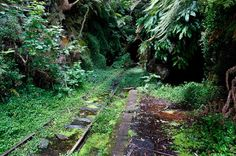 abandoned railroad stations   All images by Tom Jarman , all rights reserved, reproduced with ...