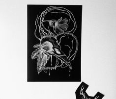 Bird skull illustration high quality print by EasternHawkArt