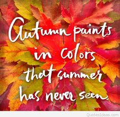 Image result for autumn leaves quotes