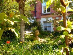 WIKTORIAŃSKIE OGRÓDKI Dopełnieniem, ostatniego postu na temat czarno-białego reportażu w stylu lat czterdziestych, niech będą udokumentowane w maju roku 2018 ogródki domów w wiktoriańskiej dzielnicy Dublina, Rathgar.