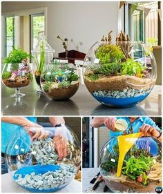 DIY Colorful Sand Terrarium Tutorials: ideas to make sand terrariums which are easy and inexpensive to make to bring fairy gardens into your house! DIY Mini Glasschale Terrarium-DIY Mini Fee Terrarium Garten Ideen Source by lizlauter Stunning Fairy Garden Fairy Garden Plants, Mini Fairy Garden, Herb Garden, Fairies Garden, Diy Garden, Fairy Gardening, Garden Ideas Diy, Diy Ideas, Backyard Plants