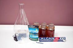 "Preparing A Yeast Starter Using Canned Wort - Kevin ""kombat"" Swan - yeaststarterwithcannedwort-01-2663.jpg"